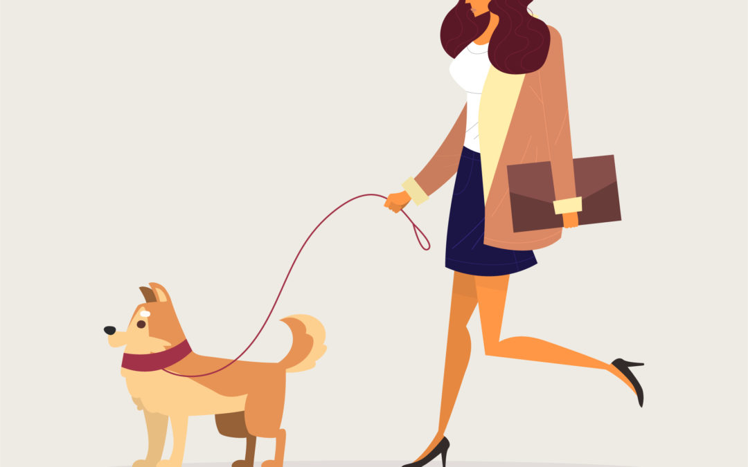 COVID – 19: Animales de compañía, clínicas veterinarias